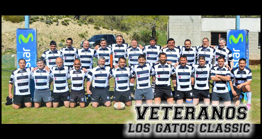 VETERANOS LOSGATOS